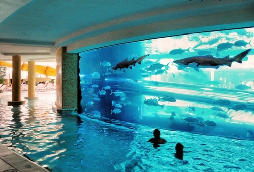 Fantastic Swimming Pools You Never Seen Before Luxury Stuff